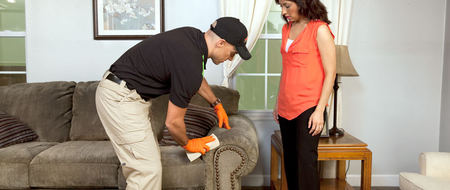 Granada Hills, CA carpet upholstery cleaning